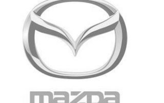 Mazda party food melbourne catering client